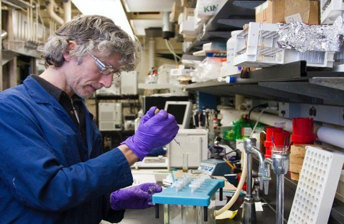 Los 6 pasos de la investigación científica