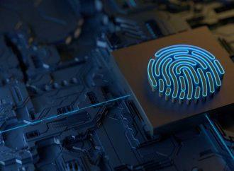 La importancia de la Seguridad de la Información