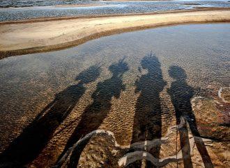 4 ramas de la antropología que debes conocer